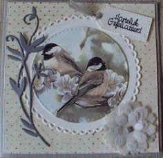 Square Card, Bird Cards, Marianne Design, Picture Cards, Card Tags, Rosettes, Doilies, Animal Pictures, Birthday Cards