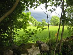 Rain clouds are darkening the sky behind the stone wall Rain Clouds, Countryside, Golf Courses, Sky, Stone, Wall, Nature, Heaven, Naturaleza