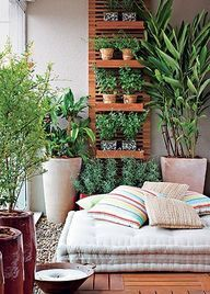 Balcony and container gardening