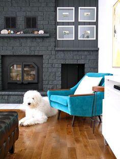 Para viver sempre de bem com seu animalzinho e com sua decoração, confira algumas dicas para contornar pequenos problemas.