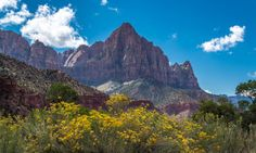 Zion National Park offers the most scenic campgrounds in the Southwest - Posted on Roadtrippers.com!