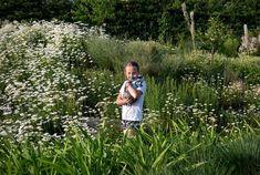 Zahrada zvlněná   Atelier Flera Boxwood Garden, Couple Photos, Couples, Atelier, Couple Shots, Couple Photography, Couple, Couple Pictures