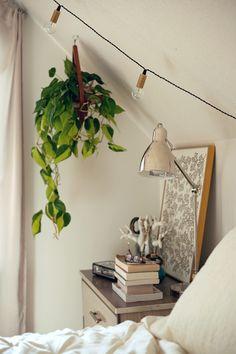bedside hanging plant + string lights