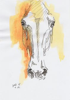 Original Sketch of a horse head Animal Art by benedictegele