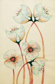 Imagined Botanicals#illustration#colleenparker