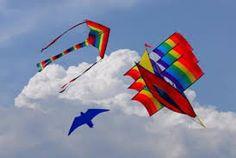 Image result for amazing kites