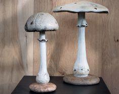 champignons décoratifs