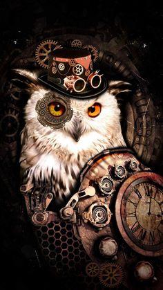 Hat Owl iPhone Wallpaper - iPhone Wallpapers