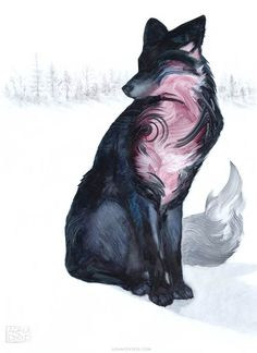 Wild – De superbes peintures d'animaux réalisées avec quelques traits de pinceau (image)