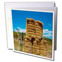 3dRose - Jos Fauxtographee Realistic - A Stack of Hay in Enterprise, Utah Shot Close up With a Blue Sky Behind and a Big Fork in Its S