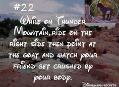Disneyland secrets #22