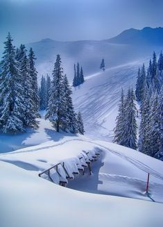 Jahorina Mountain, Republika Srpska, Bosnia and Herzegovina; by bogdan kusmuk, ☮ * ° ♥ ˚ℒℴѵℯ cjf Scenic Photography, Winter Photography, Nature Photography, Snow Pictures, Nature Pictures, Winter Love, Winter Snow, Winter Magic, Winter Scenery