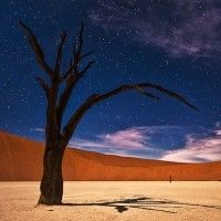 Exclusive fly in photo workshop to Namibia with Master Hasselblad photographer Rafael Rojas - Essential Seeing Meaningful Photography Learning Tree Photography, Fine Art Photography, Landscape Photography, International Photography Awards, Nature Photos, Beautiful Places, Tours, Painting, Image