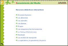 Recursos didácticos interactivos, 2º E. Primaria, C. del Medio, Editorial Anaya