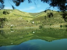 This is the Douro Valley in Northern Portugal.  Ever been?