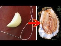 Put A Piece Of Garlic In This Part Of Your Body And You Will See What Happens To Your Health - YouTube