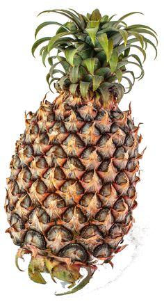 abacaxi pintado
