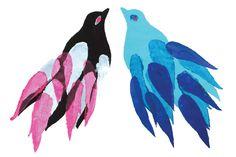 birds birds...