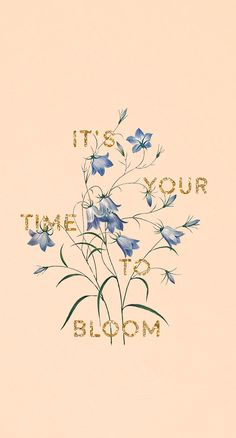 Free phone wallpaper : It's your time to bloom #wallpaper #phonewallpaper #free