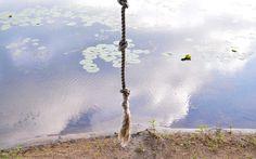 Rope Swing | | Camp Wandawega | American Road Trip | TRNK