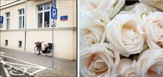 SQUARE SPACE showroom roses white warsaw
