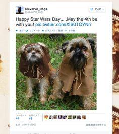 5月4日は「スター・ウォーズの日」——米国企業のリアルタイムマーケティング実例 #宣伝会議 | AdverTimes(アドタイ) - Part 2