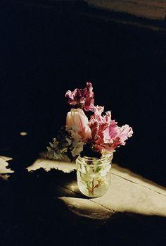floral, via Flickr.