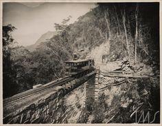 Ponte de silvestre, 1885