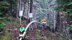 Introducing the new high speed coaster zooming from top of the gondola at the Revelstoke Mountain Resort. Vacation Places, Vacation Destinations, Vacation Trips, Vacations, Revelstoke Bc, Canada Mountains, Ski Hill, Family Road Trips, Mountain Resort