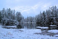 These photos prove Finland should be your next travel destination | WORLD OF WANDERLUST | Bloglovin'