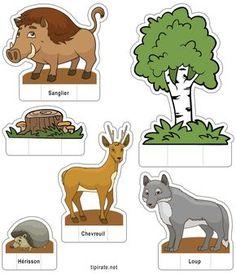 Apprendre les noms des animaux de la forêt, le sanglier, le chevreuil, le loup et le hérisson Graphing Activities, Book Activities, Teaching Kids, Kids Learning, Theme Nature, Animal Crafts For Kids, Animal Habitats, Montessori Materials, Woodland Creatures