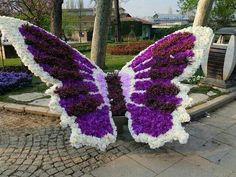 Butterfly topiary of flowers Beautiful Butterflies, Beautiful Flowers, Amazing Gardens, Beautiful Gardens, Orquideas Cymbidium, Topiary Garden, Topiaries, Formal Gardens, Plant Art