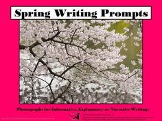 Spring Writing Prompts from TiePlay Educational Resources LLC on TeachersNotebook.com -  (23 pages)  - Do your learners need inspiration to write? Spring Writing Prompts is a collection of springtime themes using the medium of photography.