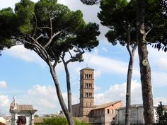View from the Forum in Rome