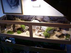 Naturnahe Hamstergehege: Gehege - Cages - Jaulas