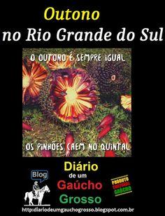 Diário de um Gaúcho Grosso: OUTONO NO RIO GRANDE DO SUL