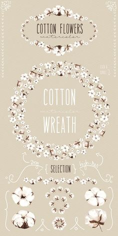 NEW! Cotton flowers watercolor by Celta on @creativemarket