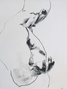 title unknown ~ charcoal (?) ~ by derek overfield