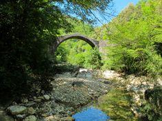 Ponte della Pia, Riserva Alto Merse. Sovicille