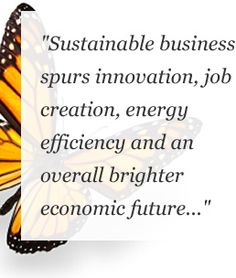 US Green Chamber Mission Green Jobs, Mission Vision, Chamber Of Commerce, Energy Efficiency, Sustainability, Innovation, Infographic, Social Media, Lifestyle