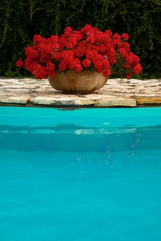 Potted flowers around the pool-always a good idea.