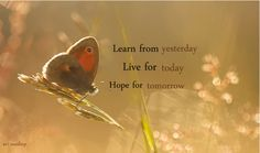 <3 Deep Words, Mindfulness, Learning, Pets, Sweet, Flowers, Animals, Candy, Animales