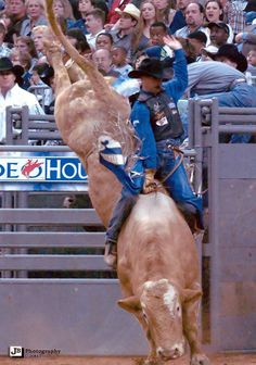 I like the bull rider but more interested in the dude with the white hat..oh baby!!!