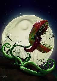 Afbeeldingsresultaat voor carnivorous plant