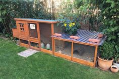 Keep and care for quail in the garden Cat Garden, Garden Care, Home And Garden, Garden Tips, Outdoor Rabbit Hutch, Indoor Rabbit, Bunny Hutch, Shelter Design, Urban Chickens