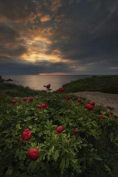 Sunrise (Bulgaria) by Krasi St M on 500px