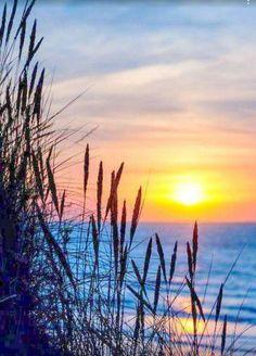 Watercolor Landscape, Landscape Art, Landscape Paintings, Watercolor Paintings, Pictures To Paint, Nature Pictures, Sunset Photography, Landscape Photography, Beautiful Paintings