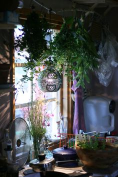 bohemian cabin kitchen. herbs hanging to dry.