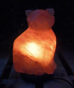 Are Salt Lamps Dangerous For Cats : 1000+ images about Himalayan salt lamp on Pinterest Persian, Himalayan salt and Salts
