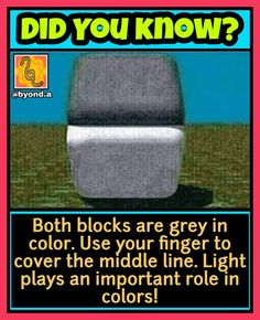 Wierd Facts, Real Facts, Funny Facts, Mind Blowing Thoughts, Mind Blowing Facts, Interesting Science Facts, Interesting Facts About World, Crazy Jokes, Some Funny Jokes